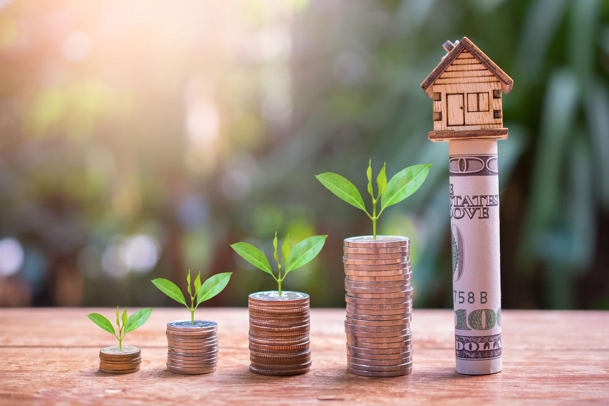 investisement immo